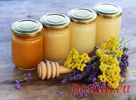 Какой мед от чего помогает — 12 видов меда. Какой лучше употреблять при той или иной болезни.