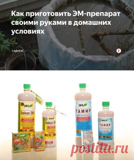 Как приготовить ЭМ-препарат своими руками в домашних условиях | садоёж | Яндекс Дзен