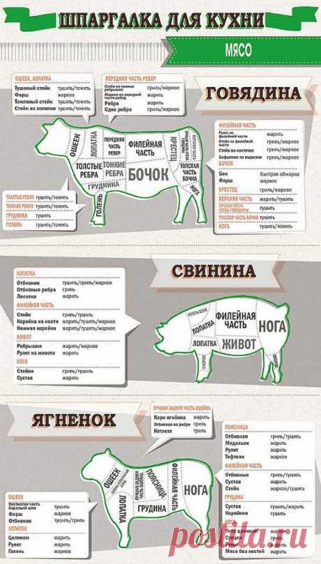 Шпаргалка для кухни: мясо.