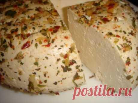 Осетинский сычужный сыр : Сыры