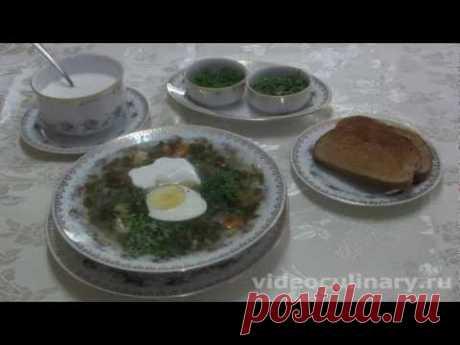Холодные зелёные щи - Видеокулинария.рф - видео-рецепты Бабушки Эммы