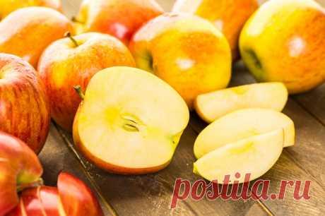 Влажная яблочная шарлотка от профессионального кондитера. По сладости идеальна, не приторная. — sovets-online.ru