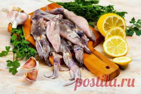Салат из кальмаров к Новому Году от Шефмаркет Наверняка многие слышали о пользе морепродуктов. Кроме того, что это ценные источники белка, это еще и вкусные продукты.