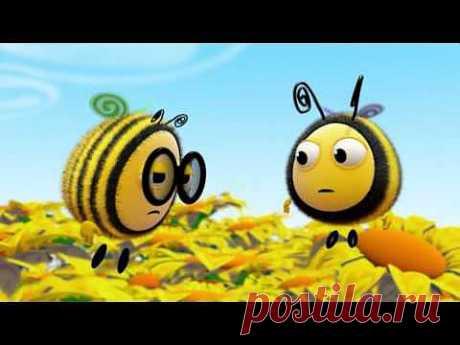 ▶ Мультфильмы для Детей - Пчелиные Истории - День Спорта - YouTube