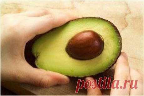 Выращиваем авокадо из косточки / Удивительное искусство