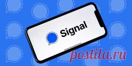 Что такое Signal и почему он безопаснее, чем WhatsApp и даже Telegram Выясняем, почему о малопопулярном раньше мессенджере сейчас заговорили все.