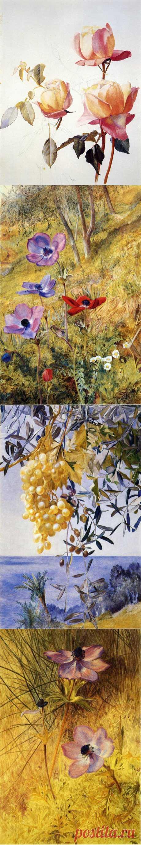Американский художник-самоучка Henry Roderick Newman (1883 - 1918) - мастерски владел техникой акварели..