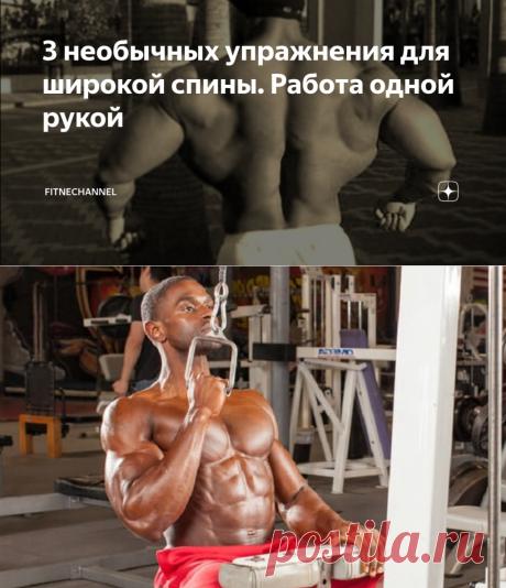 3 необычных упражнения для широкой спины. Работа одной рукой | fitnechannel | Яндекс Дзен