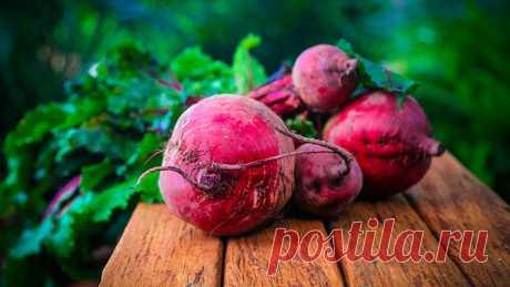 Назван овощ для борьбы с гипертонией Речь идет о продукте, богатом диетическим нитратом. По мнению специалистов, варки этого овоща следует избегать, чтобы не «растерять» вещество в воде.