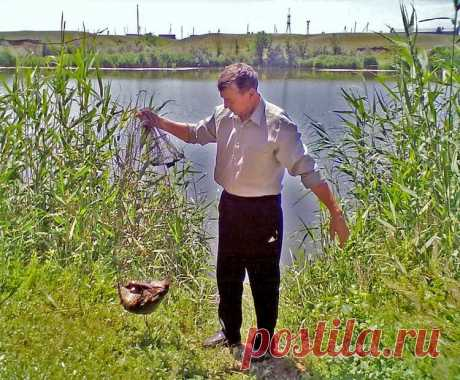 Весенний карась: как быстро приготовить его любимую прикормку? | Рыбалка для людей | Яндекс Дзен