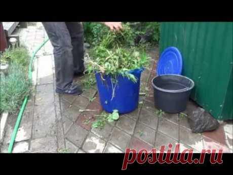 Как сделать удобрение из травы. Жидкое зеленое удобрение.