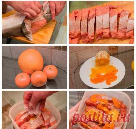 Как солить горбушу: лучшие рецепты, советы. Как засолить горбушу классическим способом, в соевом соусе, с имбирем и лимоном, в горчичном соусе и уксусе, в рассоле, за 5 минут, с апельсинами, «мокрым» способом в маринаде из меда и пряностей, в пиве: рецепт