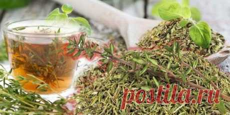 Монастырский чай: рецепт, который поднимает безнадежных больных...