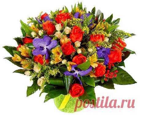 Yulia Ahmetova — «цветы-шары-доставка.рф16.png» на Яндекс.Фотках
