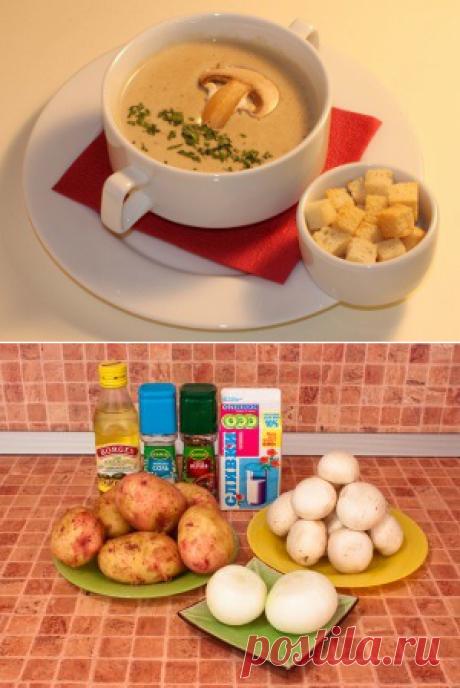 Грибной крем-суп из шампиньонов - отличный вариант нежного супа быстрого приготовления с потрясающим ароматом. Такой суп является настоящей находкой для современных хозяюшек!