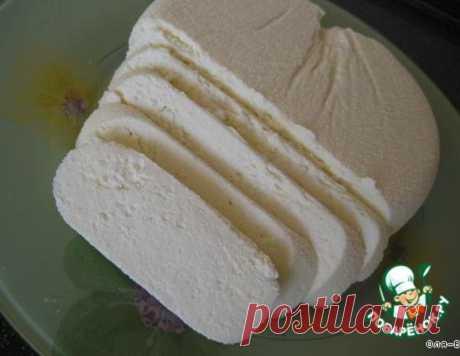 Адыгейский сыр без яиц и уксуса – кулинарный рецепт