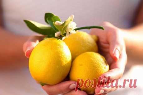 Выжать лимон «по полной» — Полезные советы