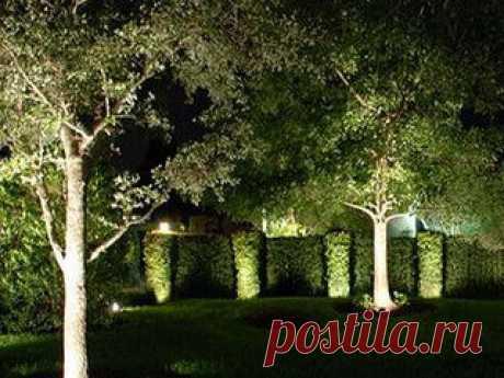Подсветка и освещение деревьев Любая парковая территория, сад, сквер или аллея нуждаются в качественном круглогодичном освещении. А качественное освещение возможно только в случае использования светодиодных светильников. Светодиоды на данный момент времени по праву признаются […]