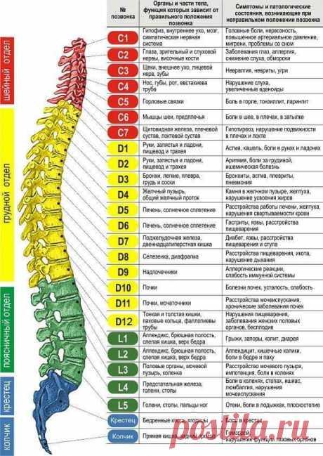 Теория и практика психотерапии (Журнал)