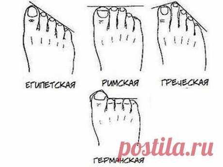 Посмотрите на ноги и определите - кем были ваши предки? 1580  Египтяне 698  Римляне 1293  Греки 21  Немцы