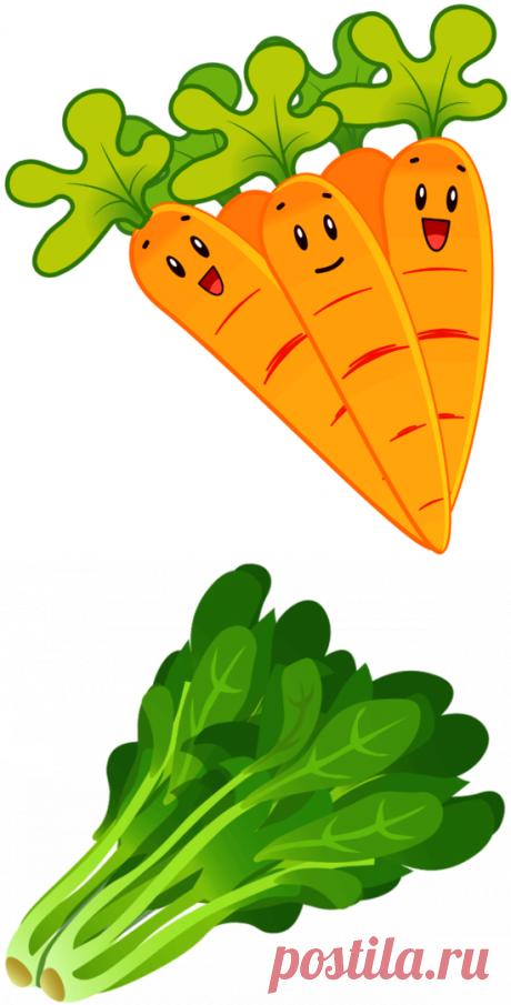Овощи: шаблоны и трафареты для ваших поделок   33 Поделки   Яндекс Дзен