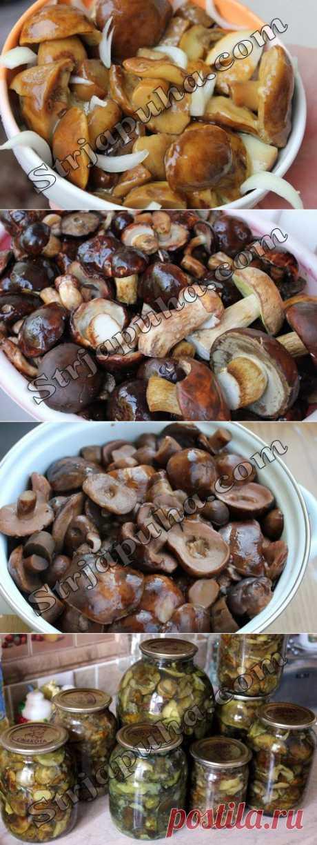 Грибы на зиму маринованные. Польский гриб маринованный