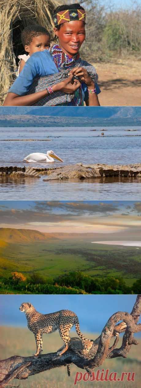 (+1) - Национальные парки Африки! | УДИВИТЕЛЬНОЕ