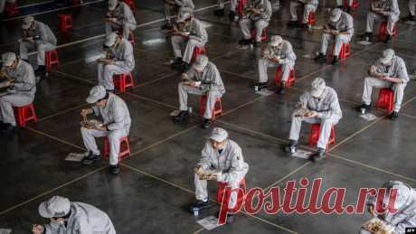 От игрушек до перчаток. Список товаров, сделанных рабами в Китае
