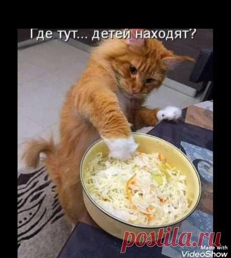 Любопытный и бесстрашный!)
