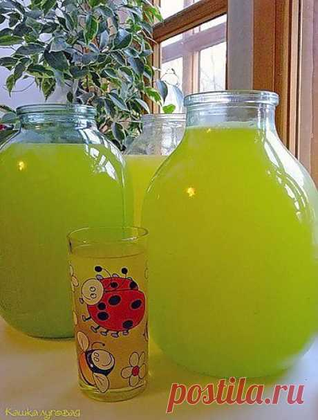 Incredibly, but fact: 9 liters of lemonade from 4kh oranges - Simple recipes of Овкусе.ру