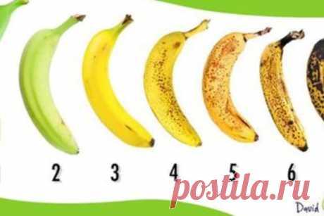 ¿Compraríais el plátano con que número? ¡Muy muchos se equivocarán en la elección dada! Miren la respuesta correcta \u000a\u000a\u000a\u000a\u000a\u000aLos plátanos — una de las frutas más subestimadas. Por el exotismo ceden a otras frutas, por ejemplo, el mango.\u000aPero el hecho se queda al hecho, los plátanos esto es sabroso, es nutritivo, y en ellos es mucho vitamino …
