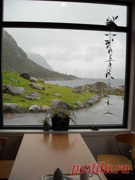 Кафе в  Океанариуме города Олесунн, Норвегия