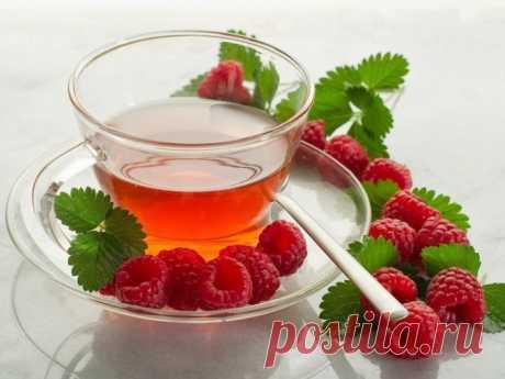Когда собирать листья малины и смородины для чая :: чай из листьев малины ферментированный :: Сад и огород :: KakProsto.ru: как просто сделать всё