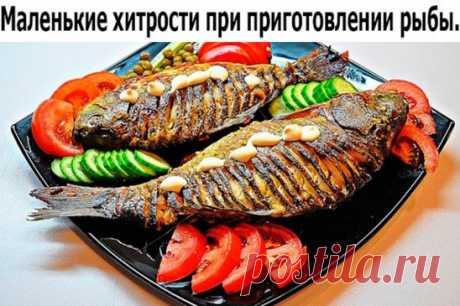 Маленькие хитрости при приготовлении рыбы. 1. Перед обработкой рыбы, поместите ее в посуду с водой, если рыба тонет она свежая, если нет, то откажитесь от приготовления данного продукта. 2. Для устранения сильного запаха при жарении рыбы в растительное масло положите одну картофелину, очищенную и нарезанную ломтиками. 3. Рыбный бульон солят в самом начале варки. 4. Соленую рыбу, прежде чем разделывать, заливают холодной водой, чтобы она слегка набухла – тогда ее легче буде...