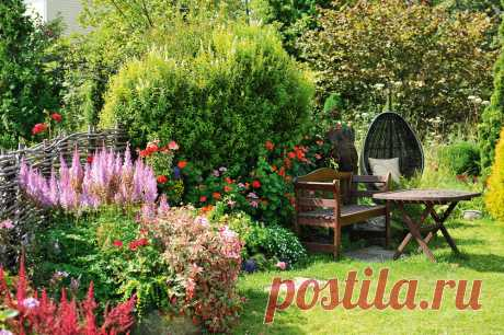 Как превратить огород в изысканный сад? | Коттеджный поселок Дарьино | Яндекс Дзен