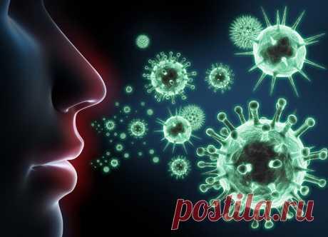 8 трав с мощным антивирусным эффектом | Блог о здоровье
