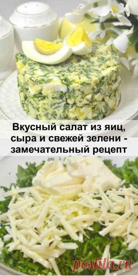 Вкусный салат из яиц, сыра и свежей зелени - замечательный рецепт - fit4girl.ru Весенние салаты из яиц и свежей зелени всегда были очень популярны. И...