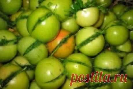 Засолка помидоров - 17 золотых рецептов!