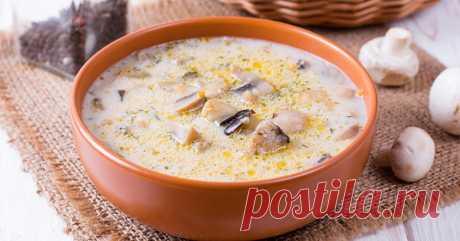 Рецепт сырного супа с грибами и мясным фаршем . Милая Я
