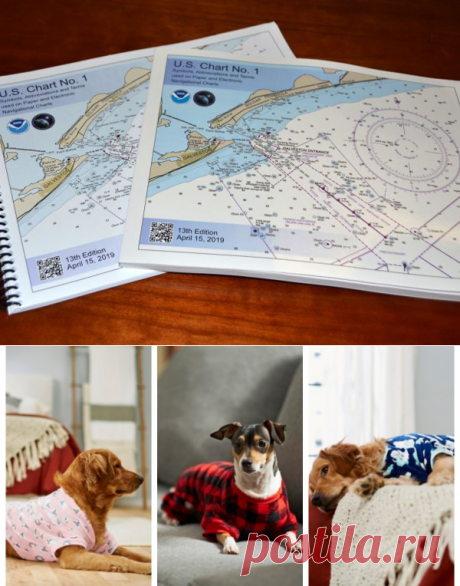 Allow Me To Introduce Everyone's Next Obsession: Pet Pajamas Exist And Every Pet Needs Some - boat