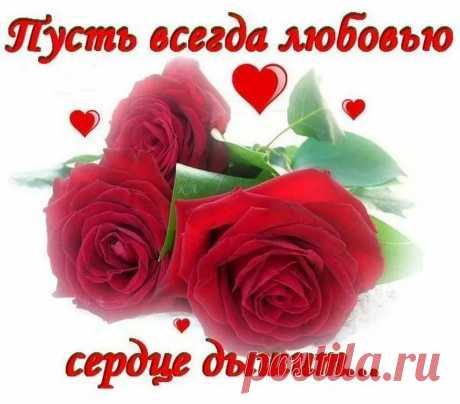 Armine Davtyan - Google+
