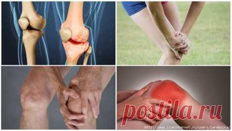 суставитин для суставов - Самое интересное в блогах