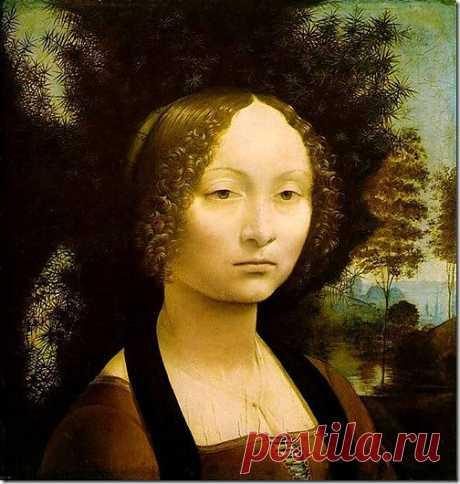 Картина Портрет Жиневры де Бенчи. 1474-76