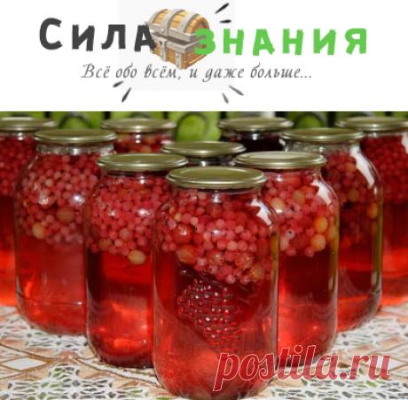 Компот из красной смородины на зиму: 6 рецептов