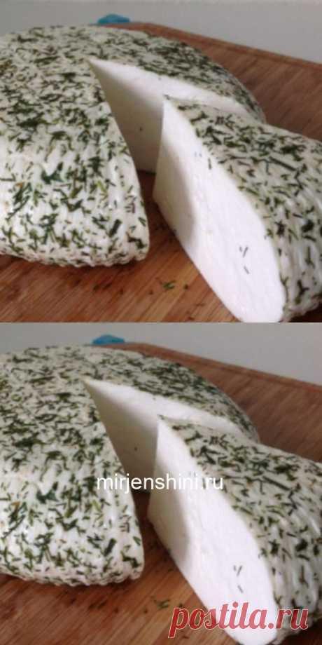 Невероятно вкусный домашний сыр с укропом - Домашние хитрости