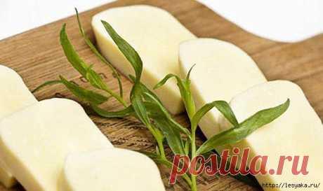 Домашний низкокалорийный сыр своими руками