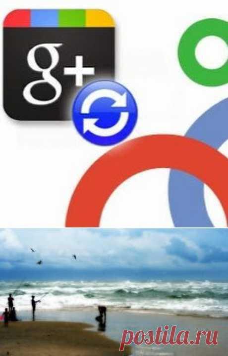 Делимся кругами Google+– Сообщество– Google+