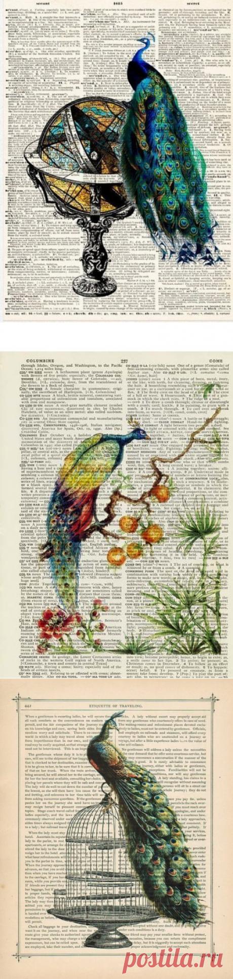 Павлины на книжных страницах. Картинки для... / Необычные поделки