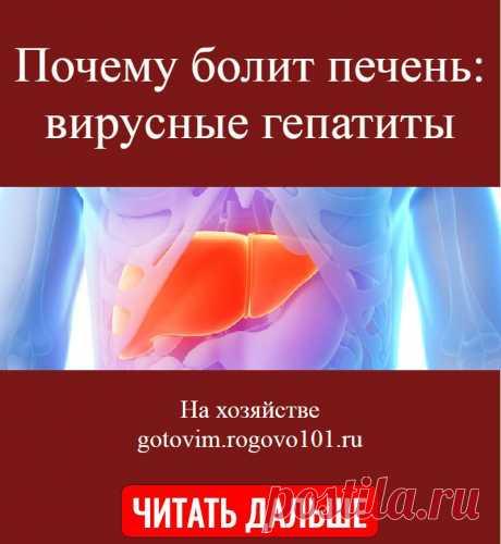 Почему болит печень: вирусные гепатиты