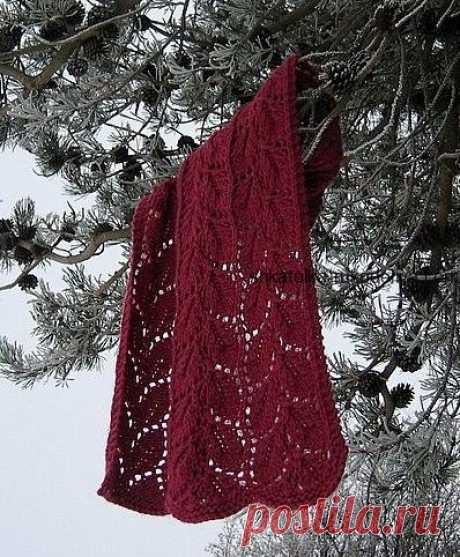 Шарф спицами. Схема вязания шарфов спицами на осень | Шкатулка рукоделия. Сайт для рукодельниц.